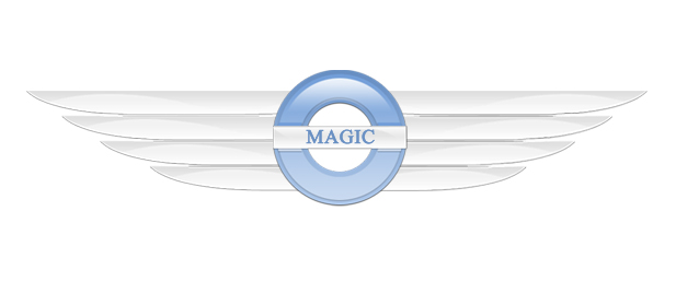 Magic Power Vehicles CO.,LTD . logo