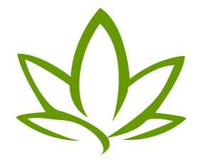 Sano Marketing logo
