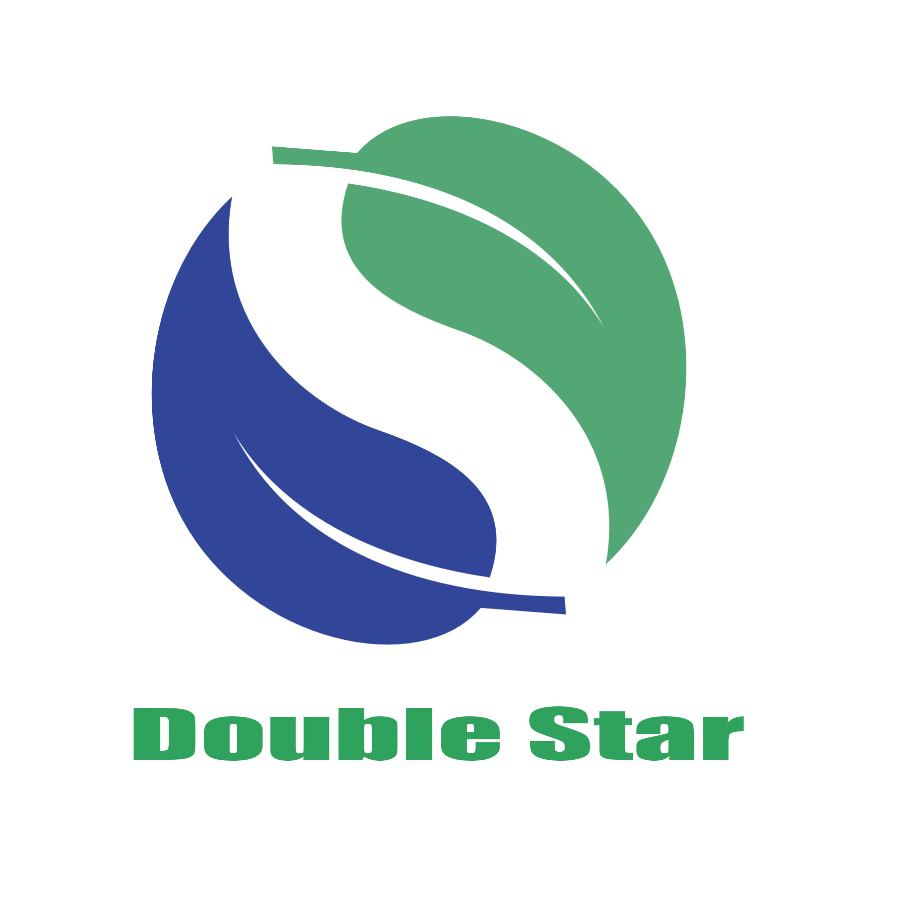yongkang double star electric co., ltd logo