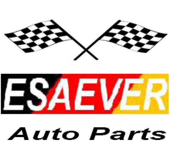 Wenzhou ESAEVER Auto Parts Co.,Ltd logo