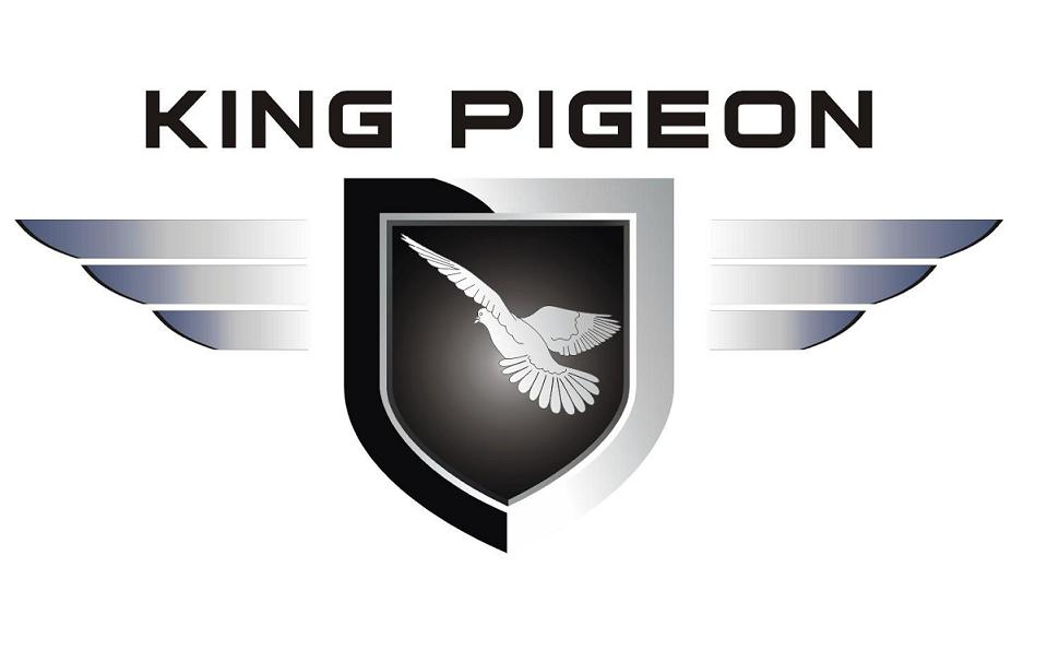 King Pigeon GSM 3G Telecare Co.,Ltd. logo