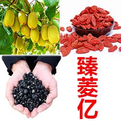 ShaanXi Zhen Lingyi Trade Co.LTD logo