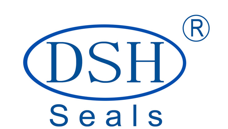 Dongguan DSH Seals Technology Co., Ltd logo