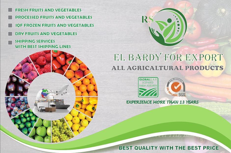 Elbardy for Export Main Image