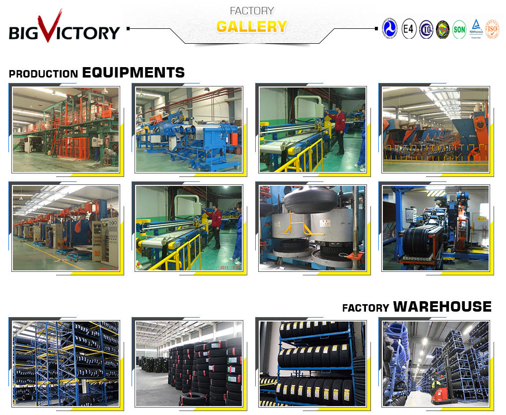 QINGDAO BIG VICTORY INTERNATIONAL TRADE CO.,LTD Main Image