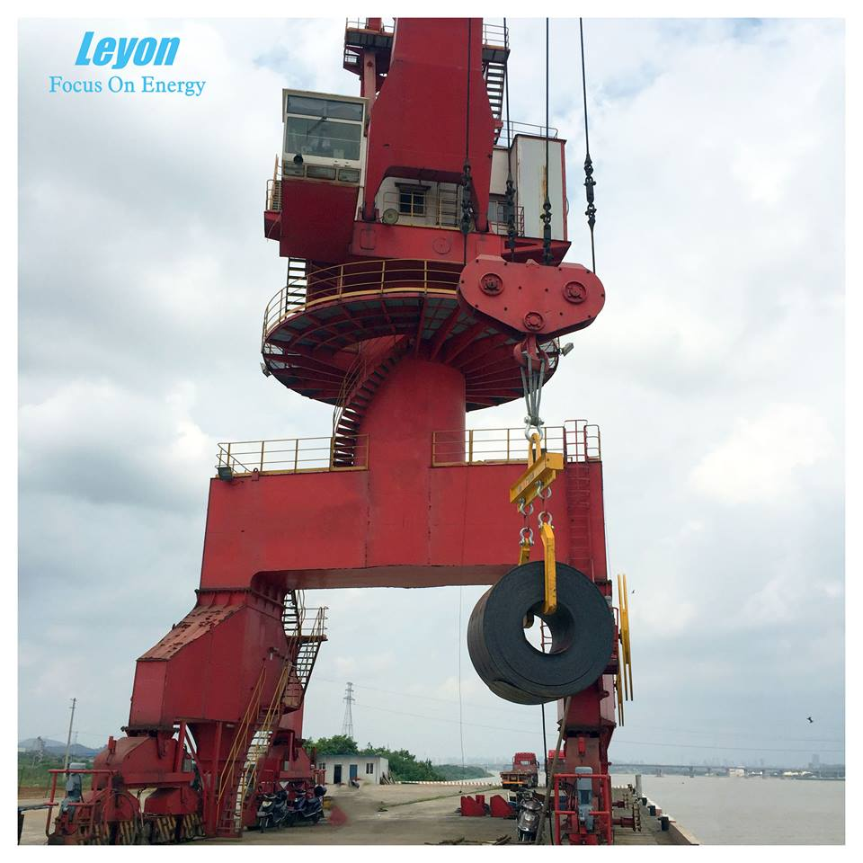 Leyon International Trading(Shanghai) Co., Ltd. Main Image