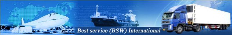 Shenzhen Best Service (BSW) International Logistics Co., Ltd. Main Image