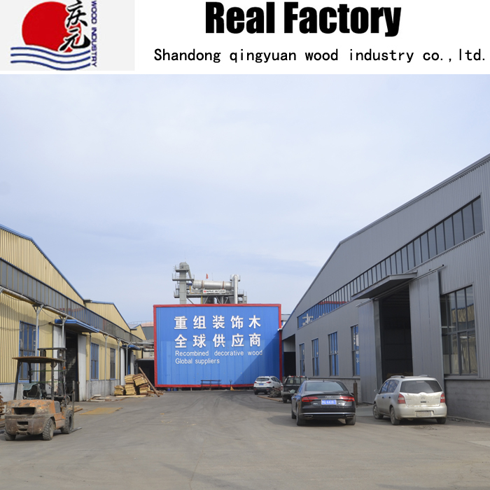 Shandong Qingyuan Wood Industry Co.,Ltd. Main Image