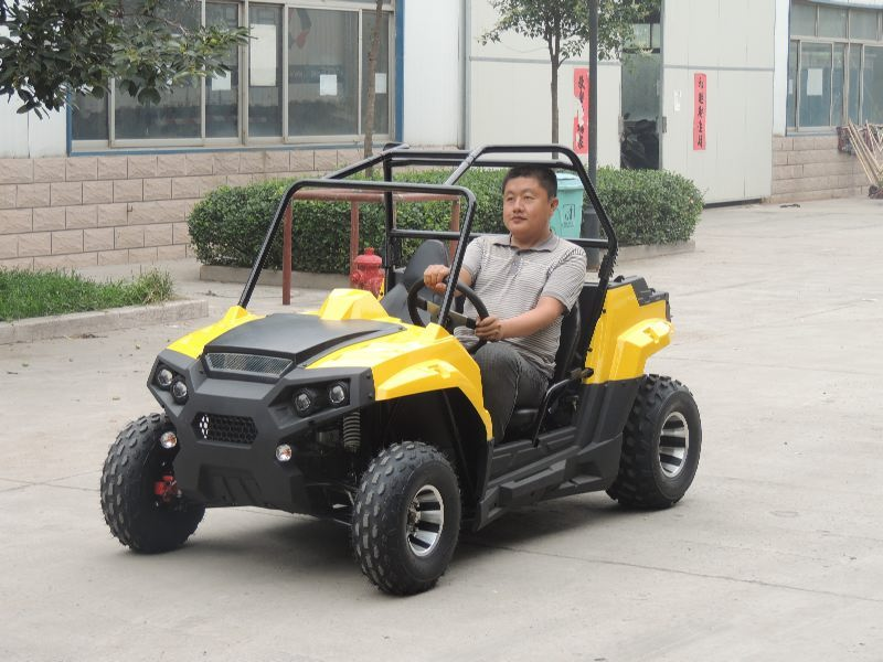 shandong shengwo new energy vehicle co., ltd Main Image