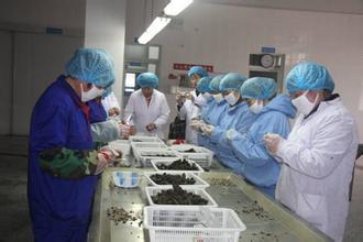 Harbin Hai De Li Feng Aquatic Products Co., Ltd Main Image