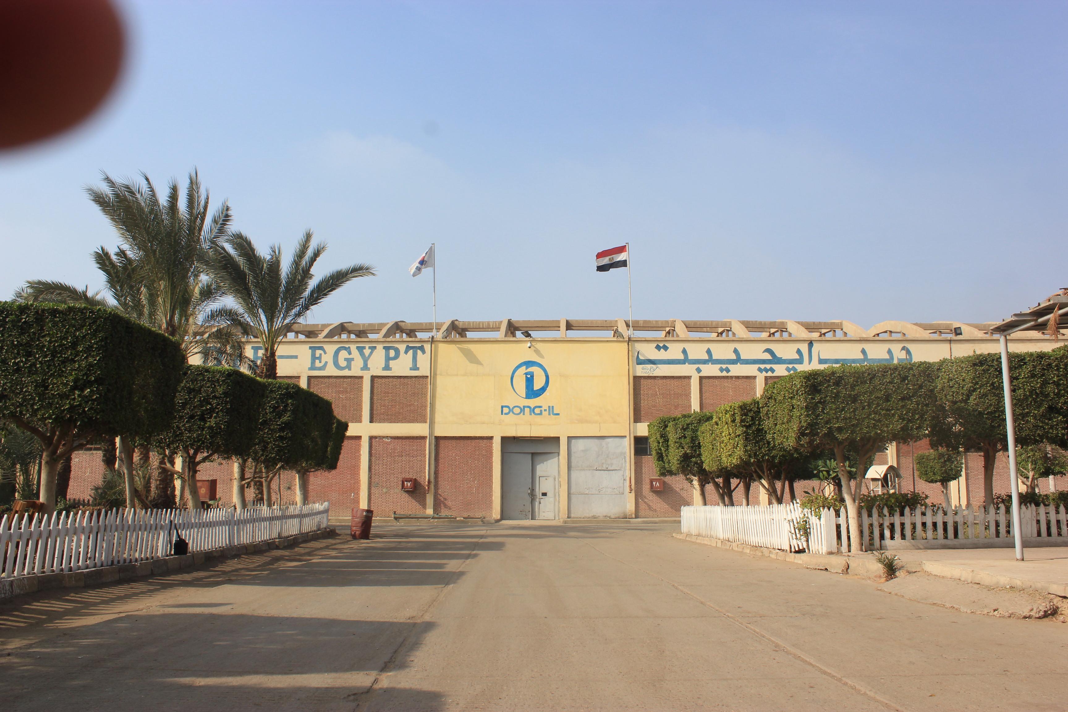 DIB-Egypt LLC. Main Image