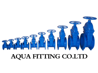 Aqua Fitting CO.,LTD Main Image