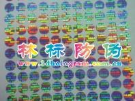 Dongguan LinBiao Hologram Co.,Ltd. Main Image