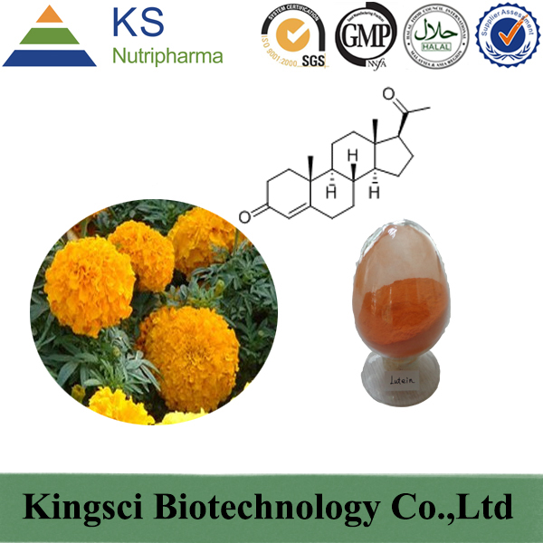 Shaanxi Kingsci Biotechnology Co.,Ltd. Main Image