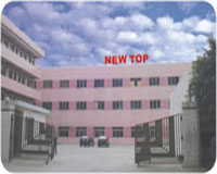 Dongguan New Top Auto Parts Co .,Ltd Main Image