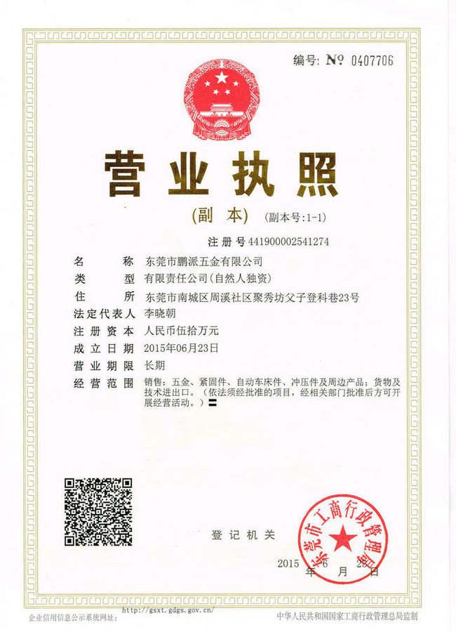 PengPai (DongGuan) Hardware Co.,Ltd. Main Image