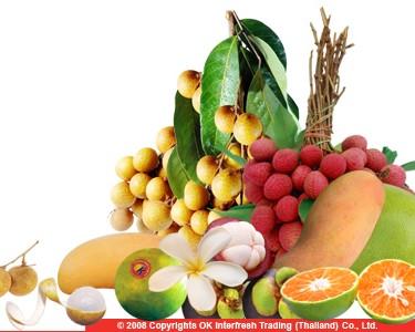 OK Interfresh Trading (Thailand) Co , Ltd  - tropical fruit