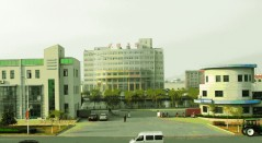 Qingdao Wuxiao Group Co.,LTD Main Image