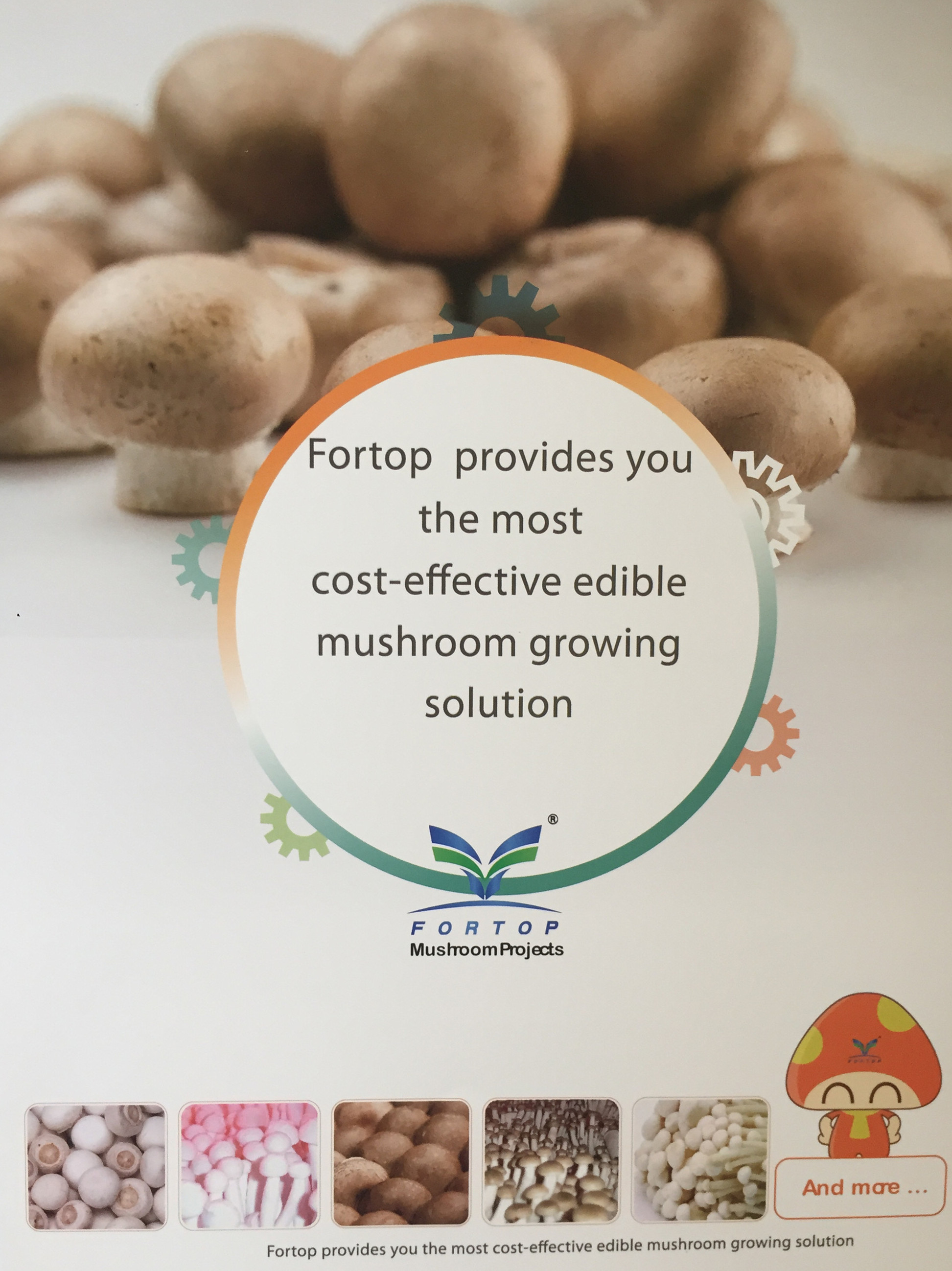 FORTOP FOOD GROUP CO., LTD Main Image