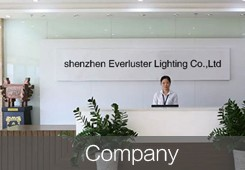 Shenzhen Everluster Lighting Co.,Ltd. Main Image