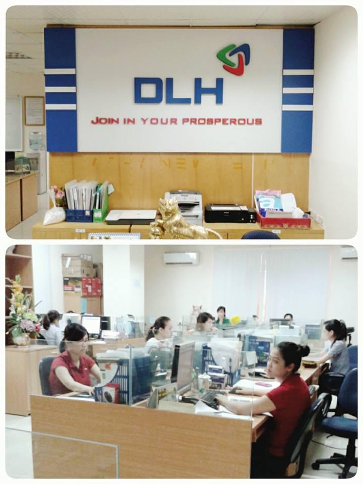 DLH VIETNAM JSC Main Image