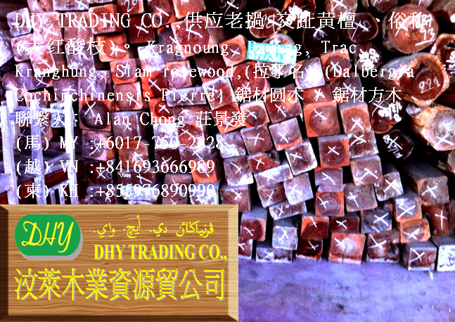 DHY TRADING CO., Main Image