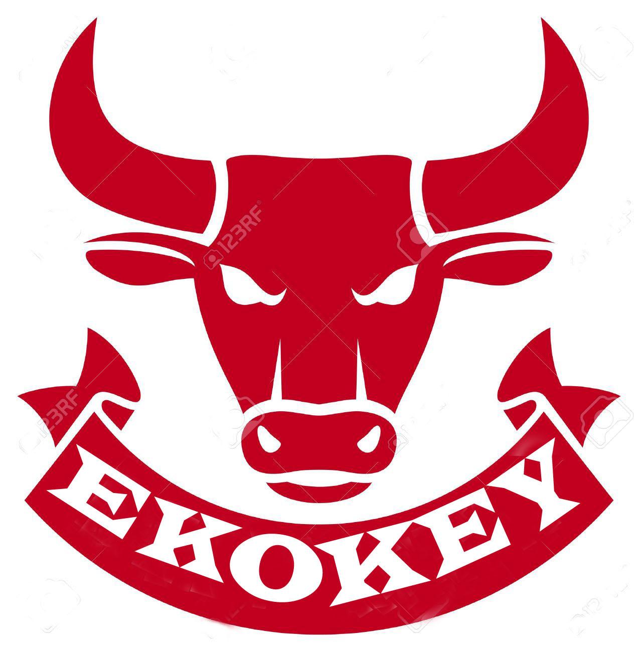 ekokey foreign trade doo Main Image