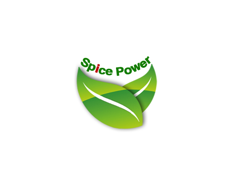 SPICE POWER IMPORT & EXPORT Main Image