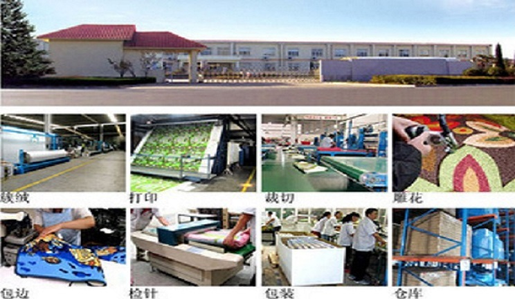 HENGSHUI NAMEI IMP.&EXP.CO.,LTD Main Image