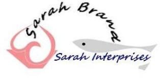 Sarah Interprises Main Image
