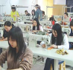 Ningbo HiBin Handicraft Co., Ltd. Main Image