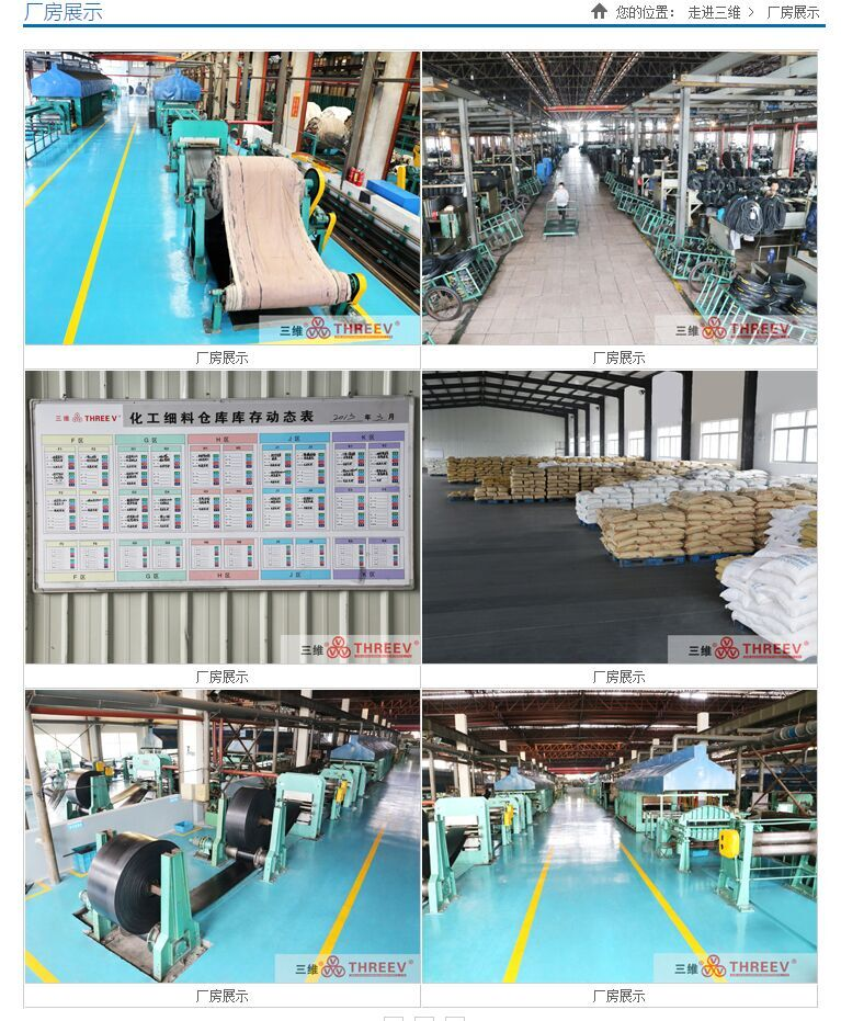 Zhejiang Sanwei Rubber Item Co.,Ltd Main Image