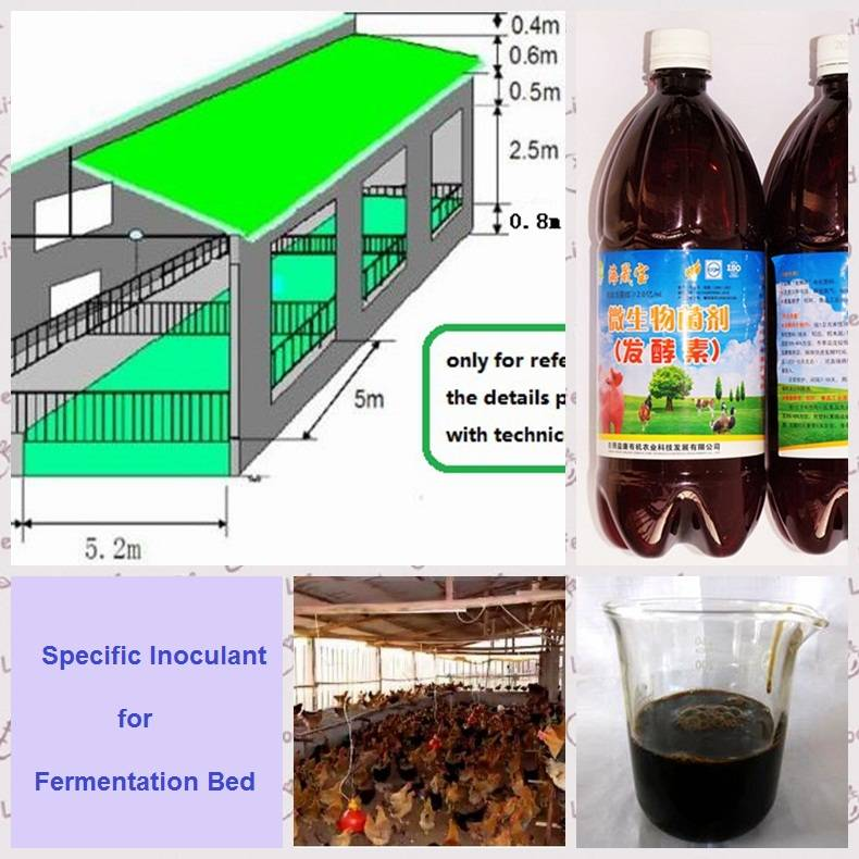sell Specific Inoculant for Fermentation Bed ferment bed