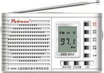 9-band digital clock radio p-9008