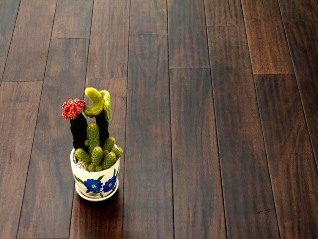 Acacia-Sienna Hardwood Flooring