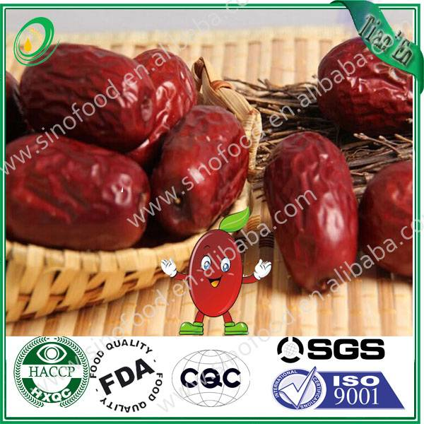 sweet red date jujube