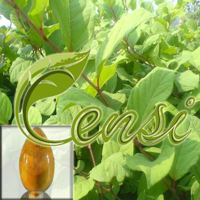 Emodin (CAS No. 518-82-1)