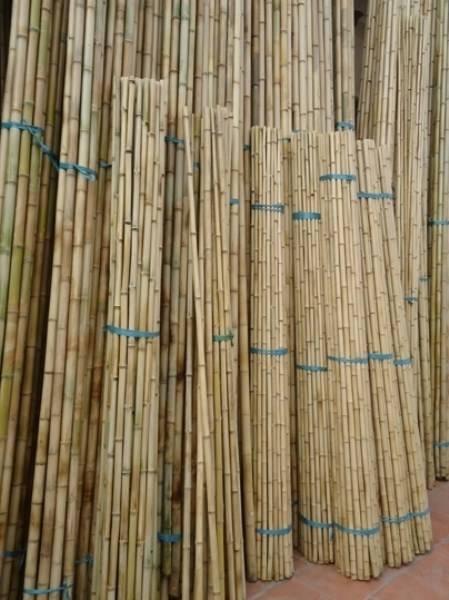 bamboo poles, bamboo poles high quality, cheap bamboo poles, nice bamboo pole