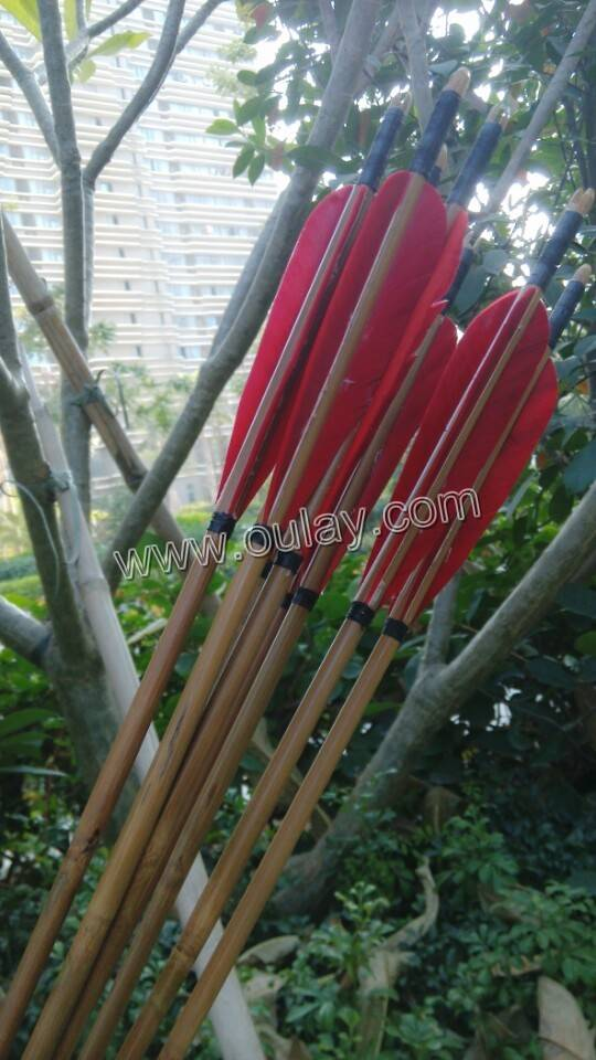 Bamboo Arrows
