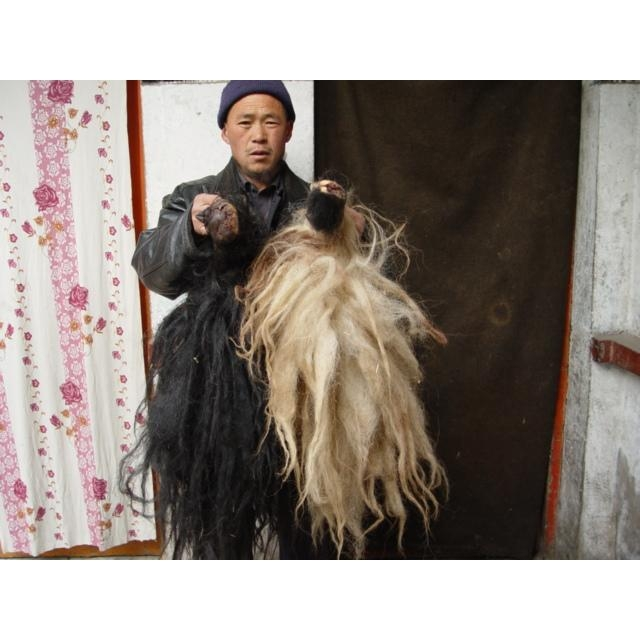 sell  yak tails and sheep horn
