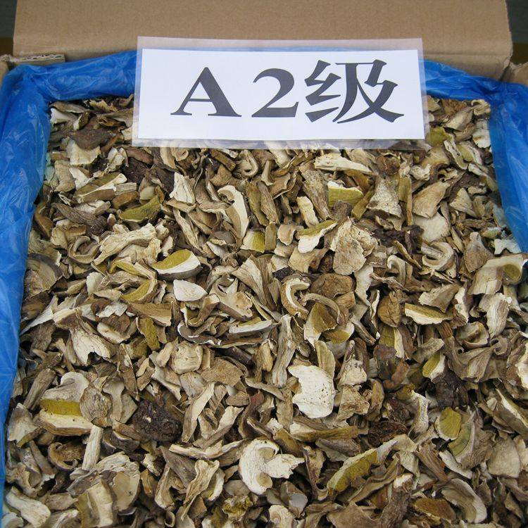 Dried Porcini Mushrooms Slice with Grade A2