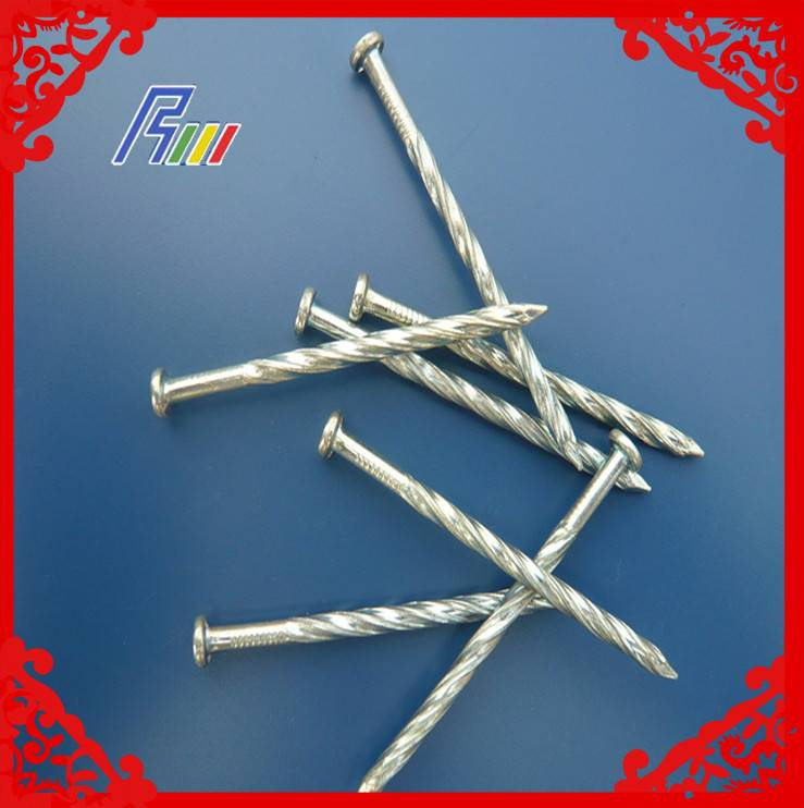 galvanized twisted nails from china factory manufacture