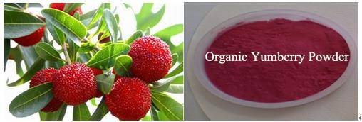Organic Yumberry Powder