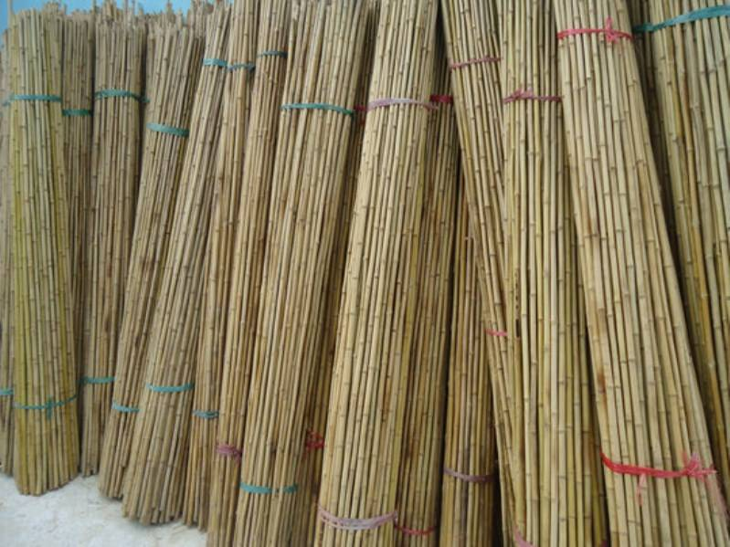 vietnam bamboo poles, bamboo poles from vietnam