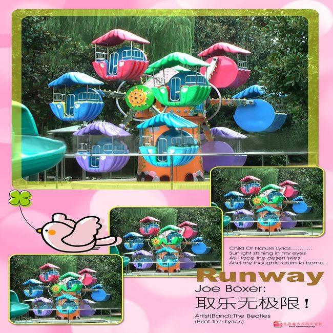 Amusement Park rides--mini ferris wheel