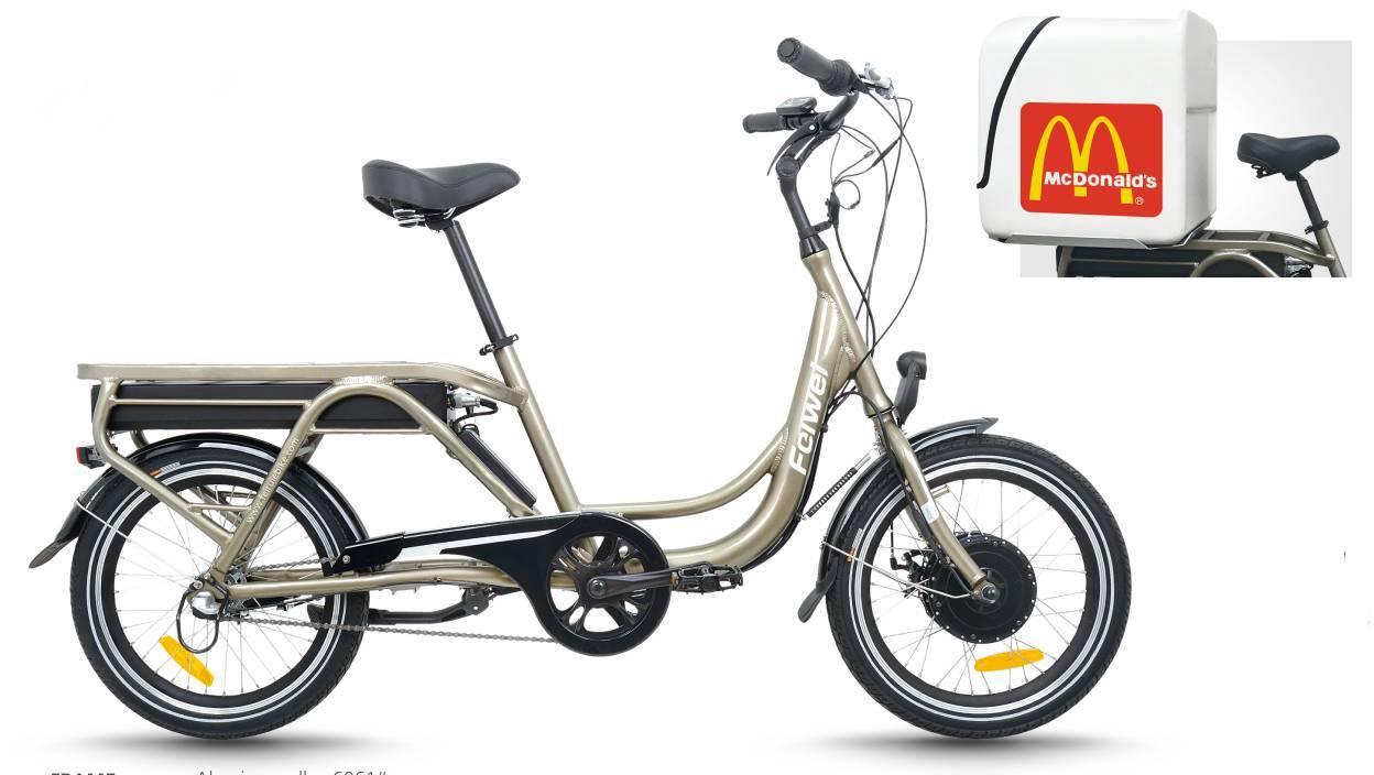 Cargo electric bike(FR-TDN03Z)