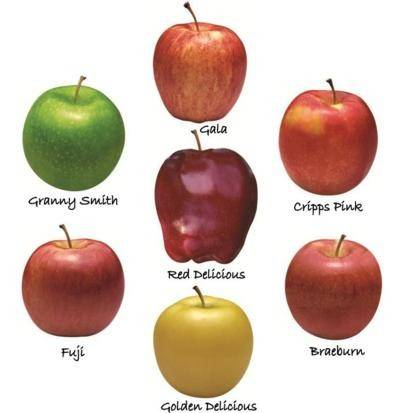 Fresh Apples/ Gala