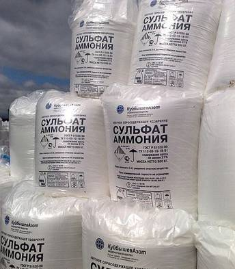 AMMOMIUM SULPHATE/DISCOUNT RATE/ MADE IN RUSSIA