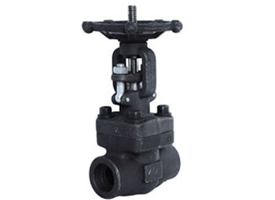 Forged Steel Gate ValveClass 150-800 Forge Steel Gate Valve
