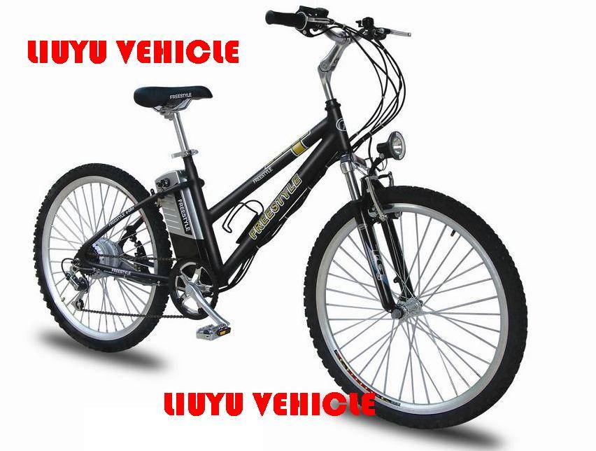 Bike Electric vehicle Scooter LYEV-12